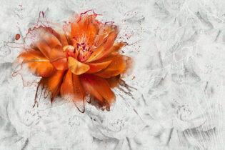 Flora - Oria