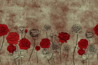 Rosa di Damasco